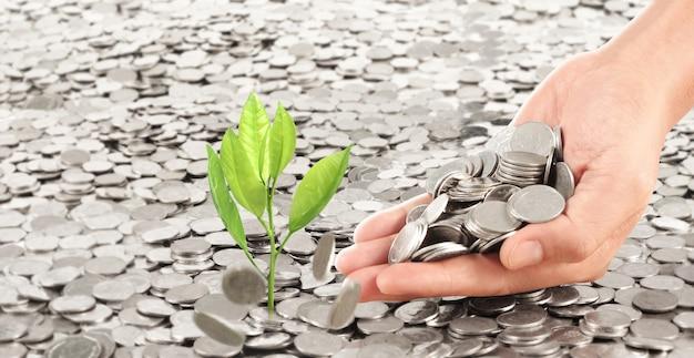 Männerhand gießt münzen