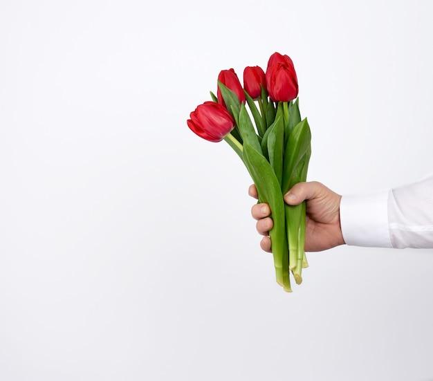 Männliche hand in einem weißen hemd hält einen strauß rot blühender tulpen