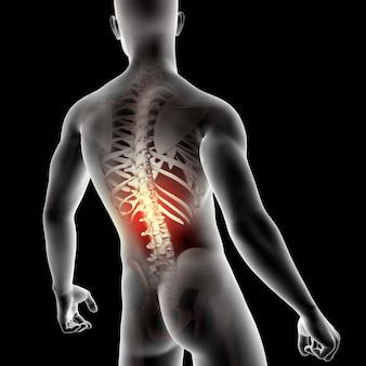 Männliche medizinische figur 3d mit dem dorn hervorgehoben