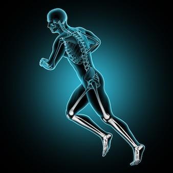 Männliche medizinische zahl 3d, die mit den beinknochen hervorgehoben läuft