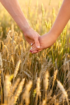 Männliche und weibliche hand halten sich im weizenfeld