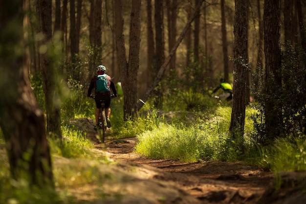 Männlicher athlet mountainbiker fährt fahrrad entlang eines waldweges. radfahren mtb enduro flow trail track. outdoor-sportaktivitäten