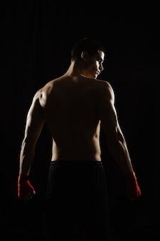 Männlicher boxer, der seinen mächtigen rücken aufwirft
