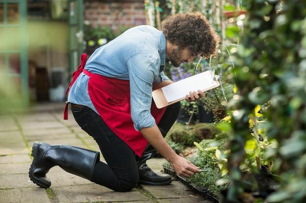 Männlicher gärtner mit zwischenablage, die außerhalb gewächshaus arbeitet