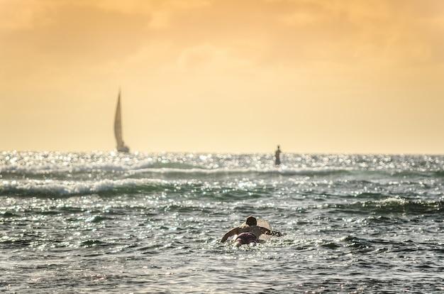 Männlicher surfer, der heraus bei sonnenuntergang in hawaii mit segelbooten im hintergrund schaufelt