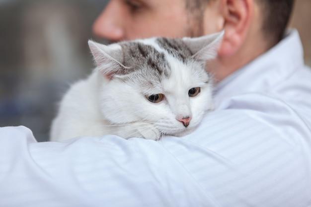 Männlicher tierarzt mit einer katze in seiner klinik