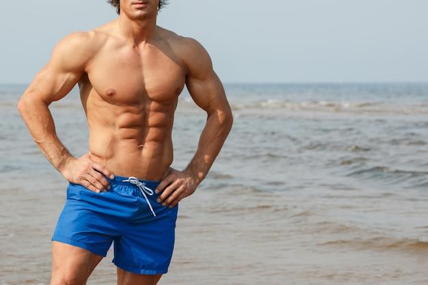 Männlicher torso