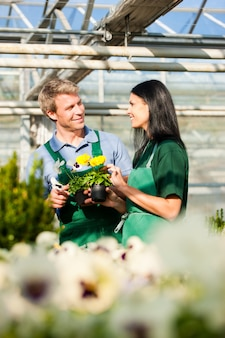 Männlicher und weiblicher florist oder gärtner im blumenladen