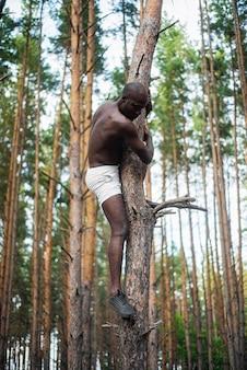 Männliches schwarzes ohne hemd klettert einen baum