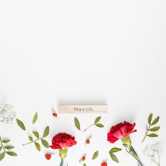 März inschrift mit nelkenblüten