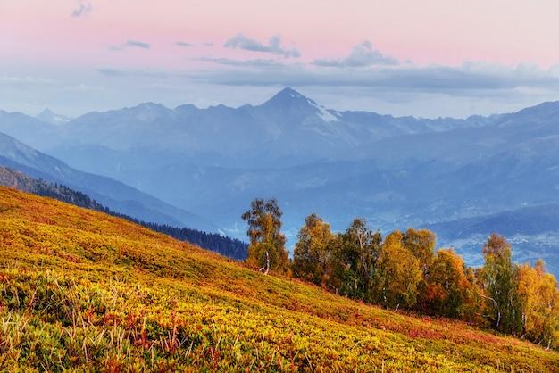 Magische herbstlandschaft und schneebedeckte berggipfel. ansicht von t