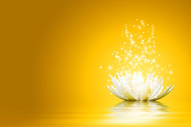 Magische lotusblume