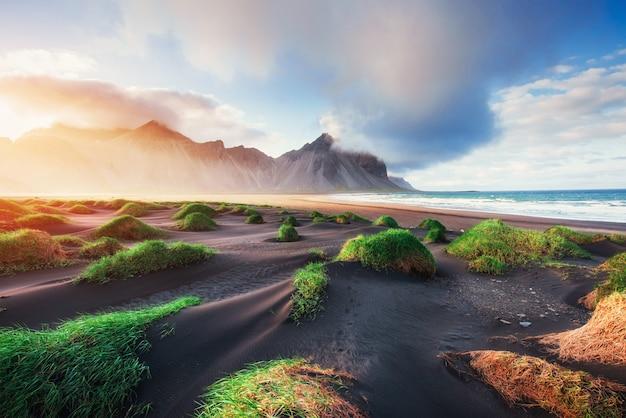 Magischer sonnenuntergang an einem sandstrand. schönheitswelt. truthahn