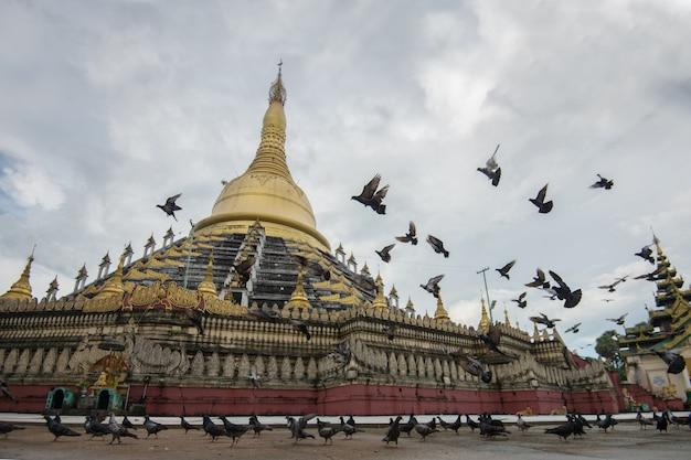 Mahazedi paya mit taube die größte pagode in bago