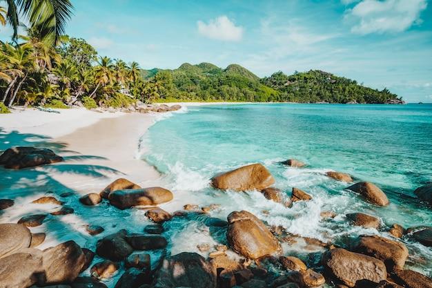 Mahe, seychellen. schöne anse absicht, tropischer strand mit ozeanwelle, die in richtung sandstrand rollt. kokospalmen am ufer