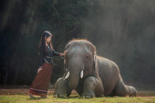 Mahout im dorf chang, provinz surin thailand.