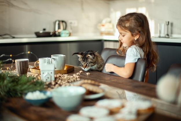 Maine-coon-katze und ein süßes mädchen sitzen am tisch neben dem weihnachtsdekor das konzept von p...