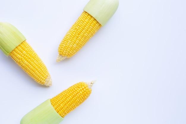Mais auf einem weißen hintergrund. ansicht von oben