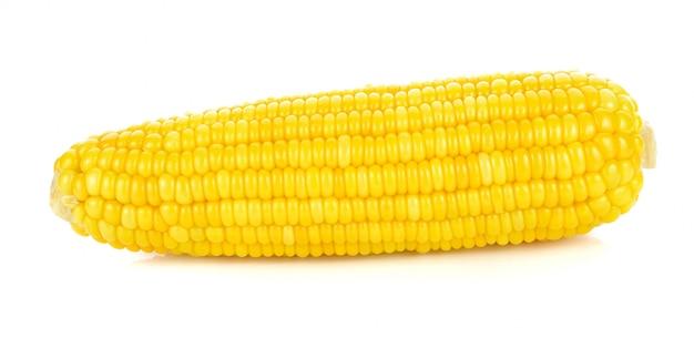Mais auf einem weißen hintergrund