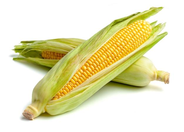 Mais in den blättern