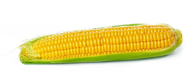 Mais, isoliert auf weiss