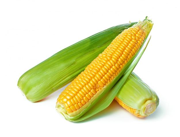 Mais isoliert auf weißem hintergrund