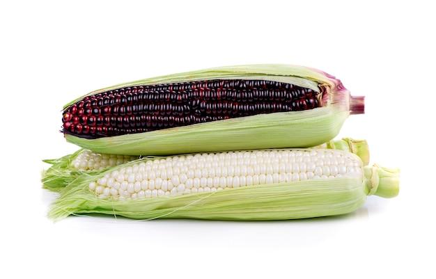 Mais lokalisiert auf weißem hintergrund