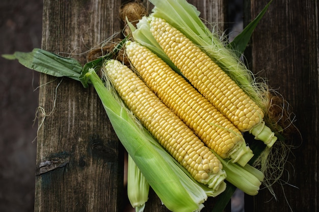 Mais mit blättern