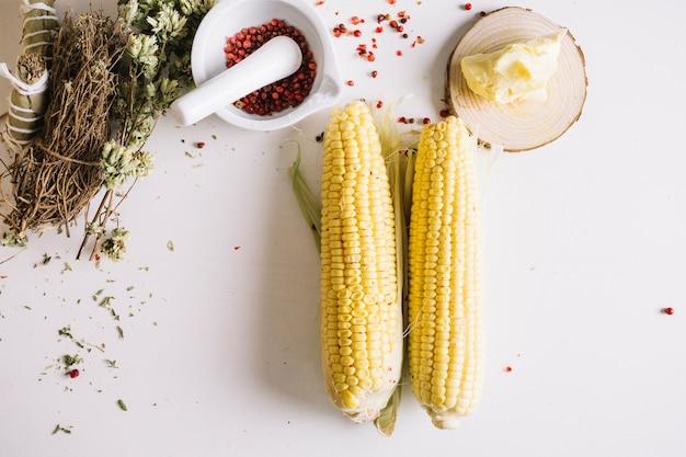 Mais und spezies auf weißem hintergrund
