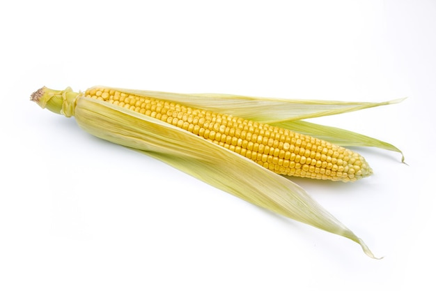 Maiskolben auf einem weißen hintergrund