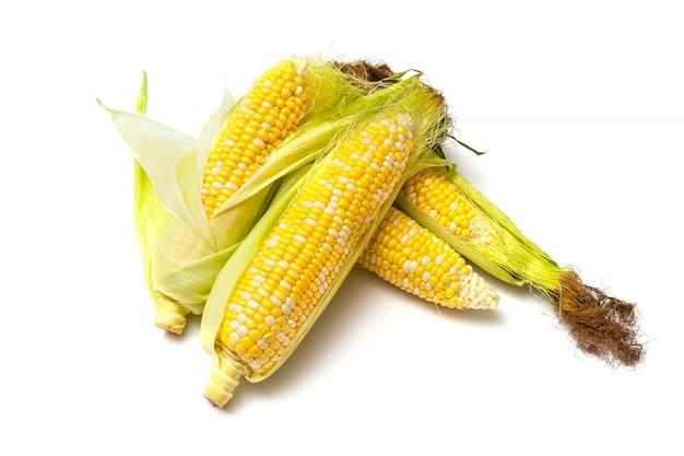 Maiskolben auf weißer oberfläche