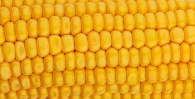 Maissamen textur