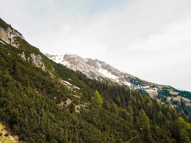 Majestätische alpen im sommer mit grünen bäumen und schneebedeckten gipfeln