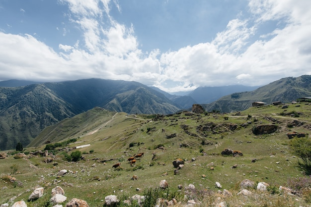 Majestätische berge auf dem hintergrund der schönen natur
