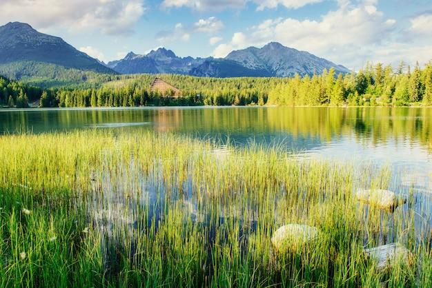 Majestätischer gebirgssee im nationalpark hohes tatra.