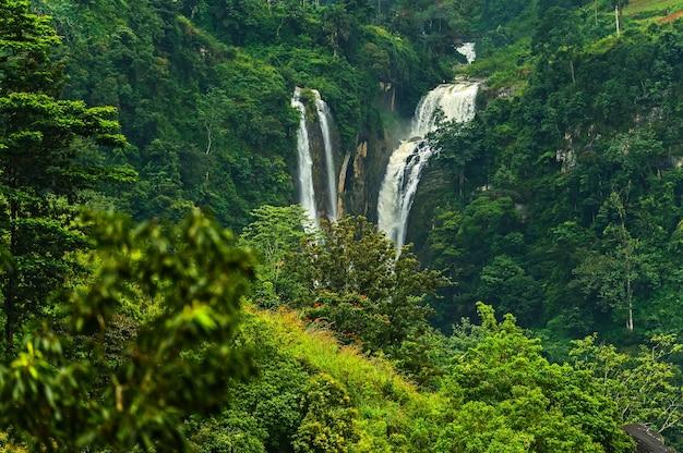Majestätischer wasserfall ramboda symbol von sri lanka