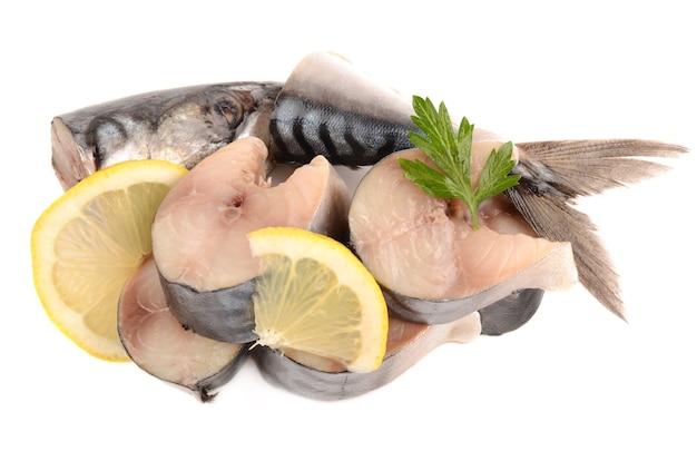 Makrele isoliert auf weiß