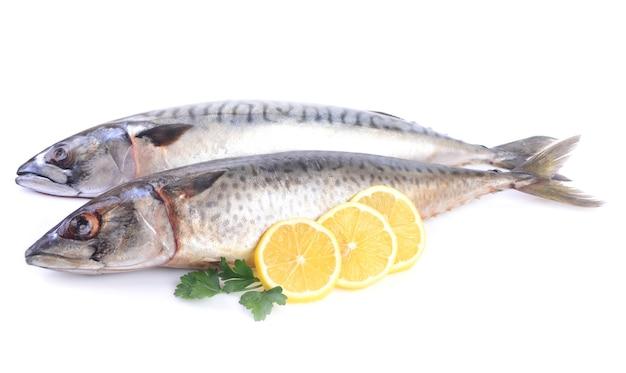 Makrele mit zitrone auf weißem hintergrund