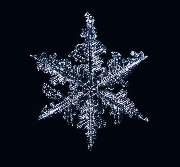 Makro der gefrorenen kleinen schneeflocke