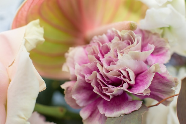 Makro empfindliche frische rosarosenblume. hochzeitsdekoration mit frischen blumen.