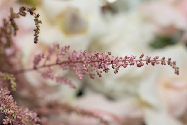 Makro empfindliche rosa blumenniederlassung. hochzeitsdekoration mit frischen blumen