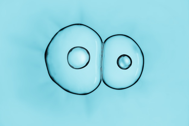 Makro nah oben von den seifenblasen schauen wie wissenschaftliches bild des zellteilungsprozesses.