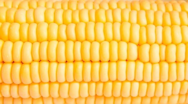 Makroaufnahme von mais für ethanol verwendet füllt den rahmen