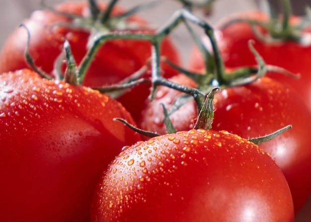 Makrofoto von bio-tomaten auf einem stiel mit tropfen reinen wassers. vitamin gemüse