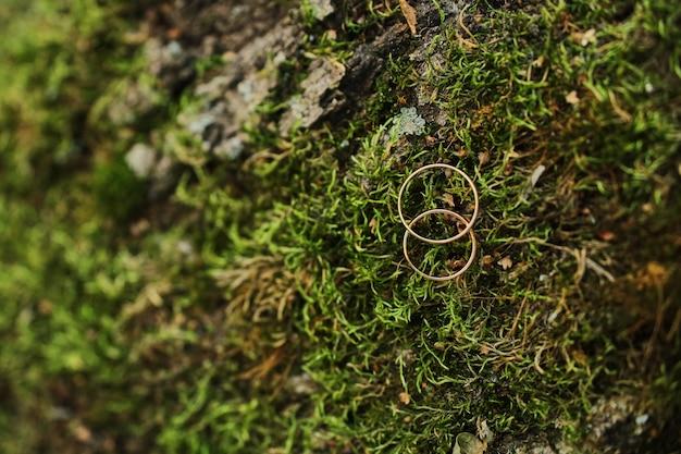 Makrophotographie von den hochzeits- und verlobungsringen, die auf moos sitzen