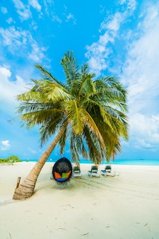 Maldives urlaub meer bora hotel