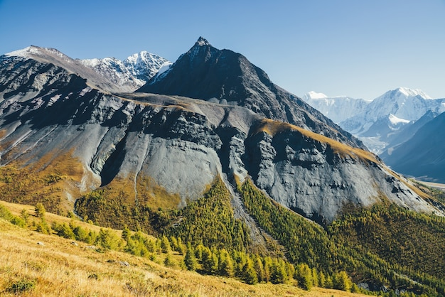 Malerische alpine landschaft mit scharfem felsgipfel und schneebedecktem berg im sonnenlicht im herbst. bunte berglandschaft mit grauschwarzem orangefarbenem berg mit scharfer spitze bei sonnenschein über herbstwald