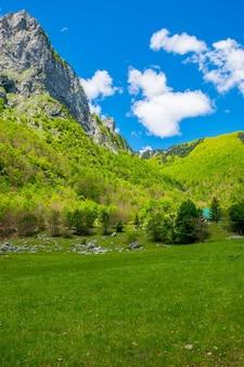 Malerische grüne wiese auf dem hintergrund von hohen felsen.