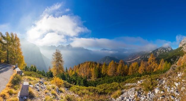 Malerische lärchen im nebel entlang der straße in der nähe des mangartpasses slowenien