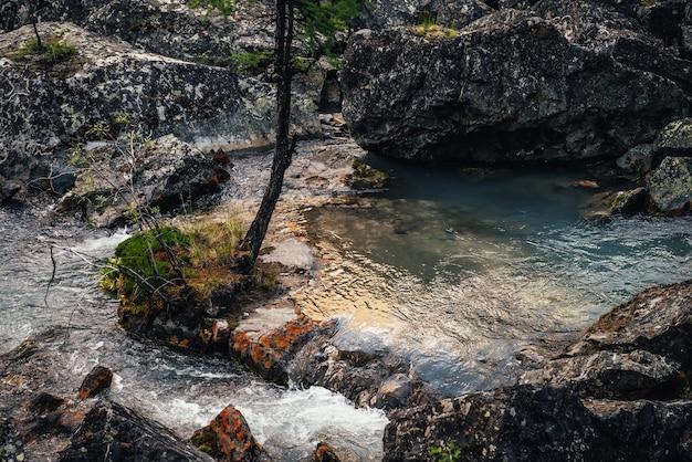 Malerische naturlandschaft mit goldenem sonnenglanz im klaren wasserstrom. stimmungsvolle berglandschaft mit moosigen steinen im transparenten gebirgsbach. gebirgsbach zwischen felsen mit moosen und flechten